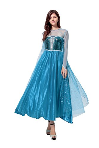 EA3 Disney Frozen Inspired Queen Elsa Winter Dress Adult Costume Halloween S-XL (M)