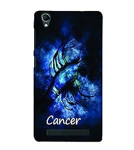 PrintVisa Zodiac Cancer 3D Hard Polycarbonate Designer Back Case Cover for Intex Aqua Power Plus