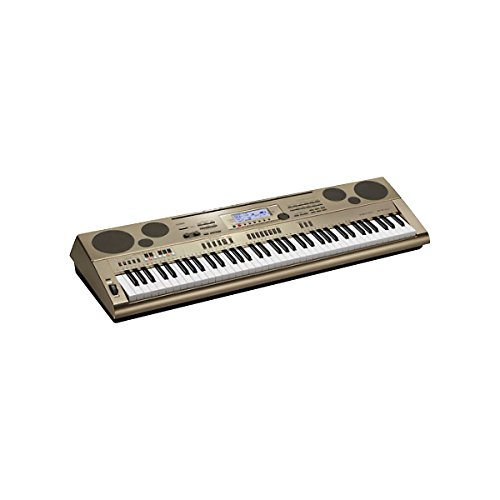 Casio At5 76-Key Oriental/Middle Eastern Keyboard With Quarter Tone Tuning