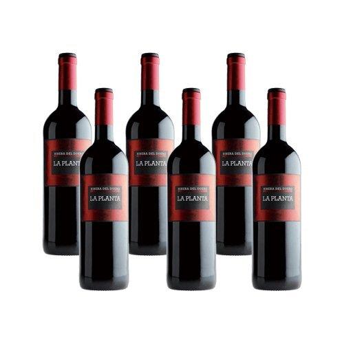 la-planta-de-arzuaga-tinta-fina-vino-tinto-6-botellas
