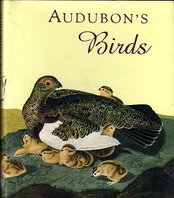 Audubon's Birds (Little Books)