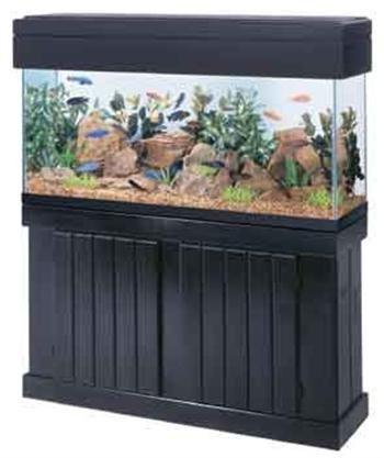 all-glass-aquarium-aag54210-pine-canopy-48-inch