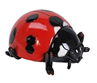 Ladybird by Vivid Arts, LARGE brightly coloured wall or garden decoration (size D)