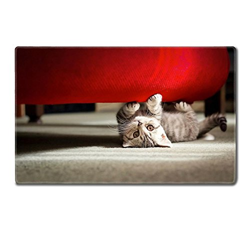 Luxlady TableMats Mousepad 24 x 15 x 0.2 inches Adorable playful kitten under sofa IMAGE 21374146 Customized Art Home Kitchen