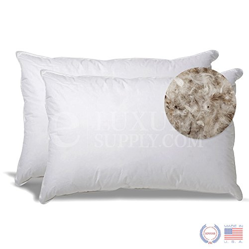 Best Buy! ExceptionalSheets Set of 2 50/50 Down Pillow, Standard