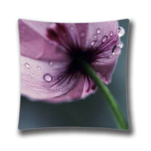 Pop Home Imac Poppy Cotton & Polyester Throw Pillow Cushion Case for Couch 18