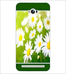 PrintDhaba Flowers D-1434 Back Case Cover for ASUS ZENFONE MAX ZC550KL (Multi-Coloured)