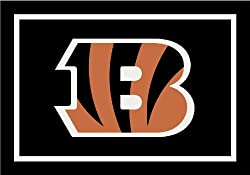 Cincinnati Bengals Team Spirit Area Rug