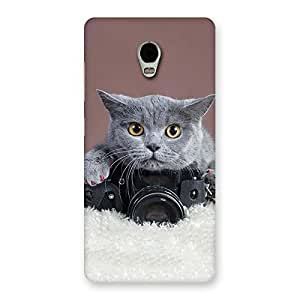 Enticing Kitty Photographer Multicolor Back Case Cover for Lenovo Vibe P1