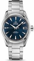 Omega Aqua Terra Mens Watch 231.10.39.21.03.001