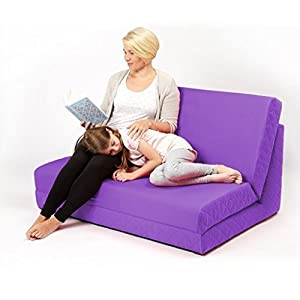 Purple Fixed Base Double Z Bed   Quilted Fold Out Futon       Customer review and more information