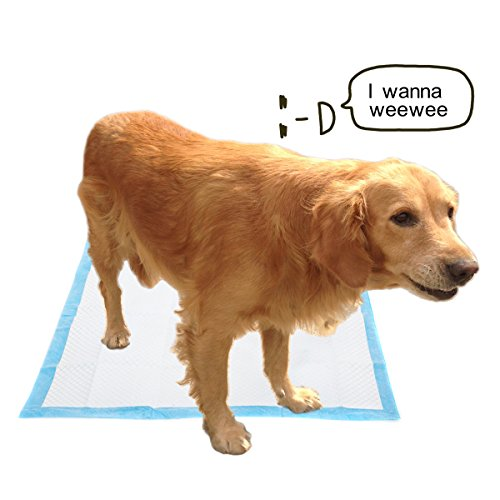 Favorite Floor Protection 22 Quot X 23 Quot Dog Puppy