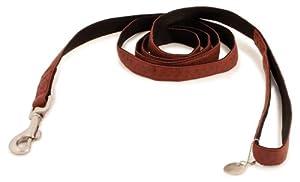 PetSafe Bark Avenue Dog Leash, 3/4-Inch by 6-Foot, Cranberry