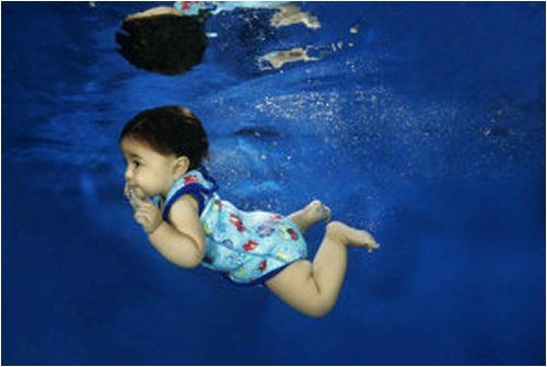 Image of Splash About Baby Wrap mini wetsuit (swimwear), Neoprene: Fish Print/blue binding Medium (B000KJLTRY)