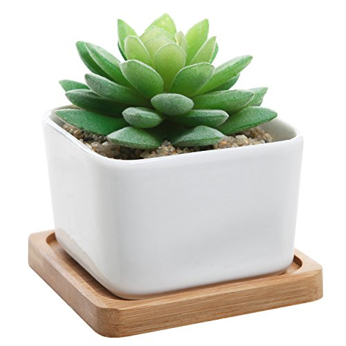 Modern Decorative Small White Square Ceramic Succulent Plant Pot w/ Bamboo Draining Tray - MyGift®