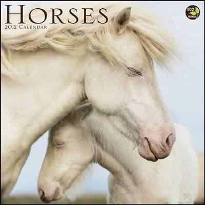 (12x12) Horses 16-Month 2012 Wall Calendar
