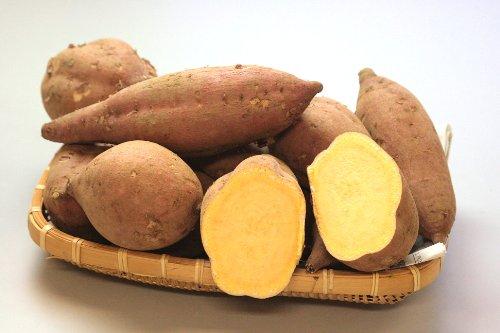 鹿児島県産種子島のビック「あんのう芋」2Lサイズ 3kg