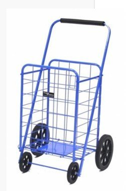 Shopping Cart Buggy