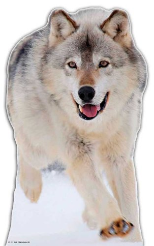 Wolf Cardboard Cutout