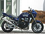 ストライカー(STRIKER) ストリートコンセプト フルエキゾースト STD チタンエキゾースト/チタンサイレンサー チタン ZRX1200 DAEG[ダエグ](09-) 941013RTJ