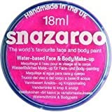 Snazaroo Professional Non Toxic Washable Water Based Reusable Kids Fun School Fete Face Paint Pots Over 30 Colours