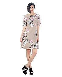 Chique Women's Dress (beigepbd_Beige _Medium)