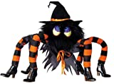 Huge 32″ Kooky Spider Witch with Light Up Eyes and Poseable Legs Halloween Decoration Picture