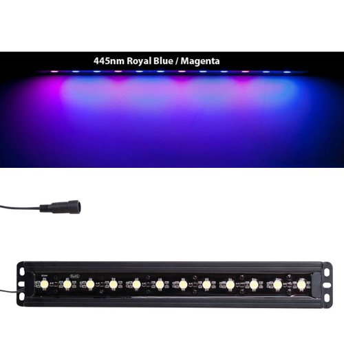 Ecoxotic Panorama Pro 16W 445Nm Blue/Magenta Led Module
