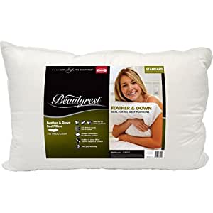 Beautyrest Feather & Down Pillow