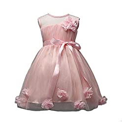 Rosennie 2016 Children Baby Girls Rose Dress Floral Princess Dress Party Dress
