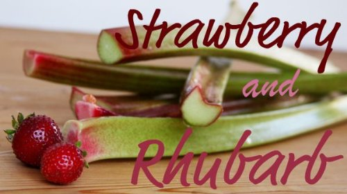 Strawberry Rhubarb Pie Filling 32 oz