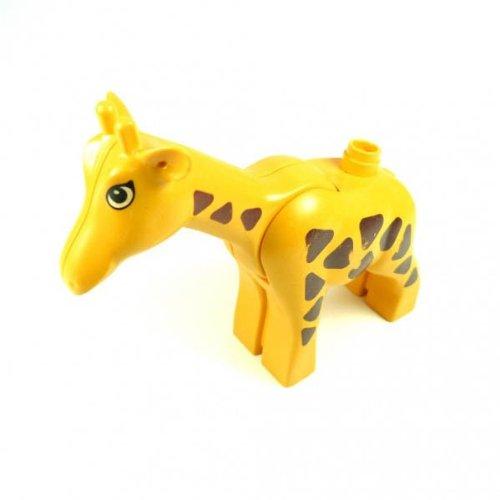 1 Giraffe groß gelb Stute Tier Bauernhof Safari