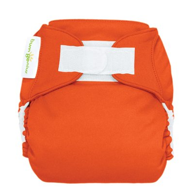 Freetime (Velcro) Aio Diaper With Stay Dry Liner - Sassy front-861203