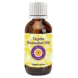 dève herbes Pure Tagete Essential Oil (Tagetes minuta) 100% Natural Therapeutic Grade (5-1250ml)