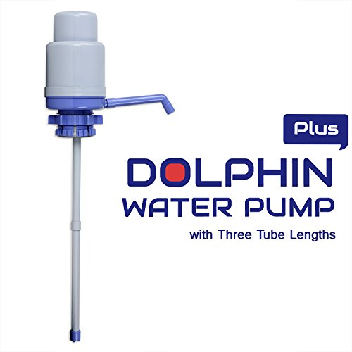 how to clean dolphin water pump