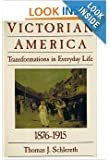 Victorian America: Transformations in everyday life, 1876-1915 (The Everyday life in America series)