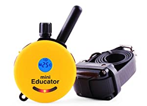 Educator ET-300TS Mini E-Collar 1/2 Mile Remote Dog Trainer