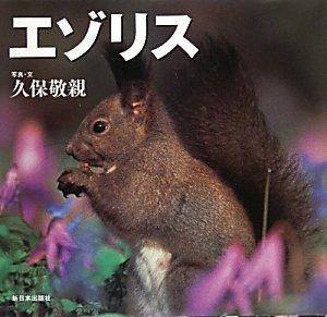 エゾリス (北国の野生動物)