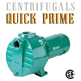 QP-1 1-HP Quick Prime Centrifugal Pump