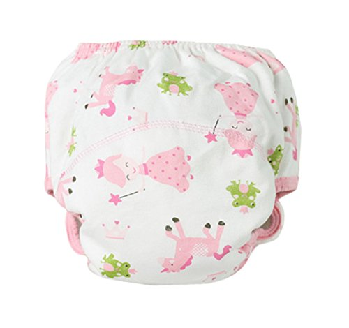buy Aivtalk Baby Kids Toddler Potty Training Pants Cloth Diaper Washable, Princess Print, Medium 90 for sale
