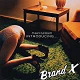 Macrocosm: Introducing...Brand X