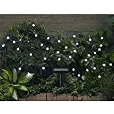 Smart Solar 3732WR30 Solar Light String, 30 White LEDs with Crystal Ball Covers