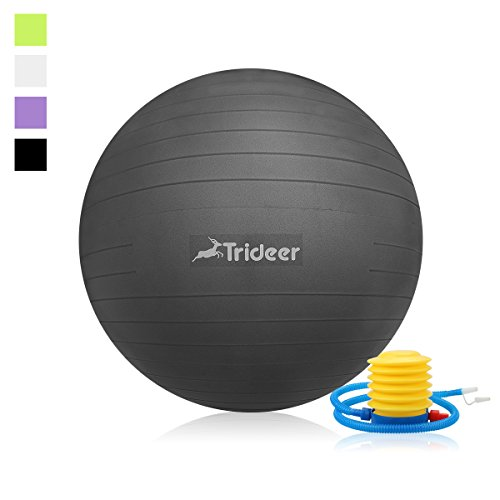 Trideer 2000lbs Anti-Burst Fitness Ball/Exercise ball/Body Balance Balancing Yoga Pilates Swiss Swedish Ball trainer with Pump Plug Kit, for Pilates/Yoga/Core Cross Train/Training/Physical Therapy (Kettle Swiss compare prices)