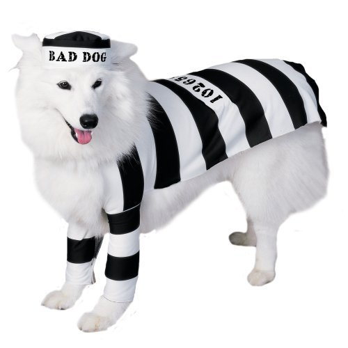 Prisoner Dog Pet Halloween Costume (Large)