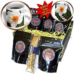 PS Flowers - Pure White Daffodil Flower - Spring Photography - Coffee Gift Baskets - Coffee Gift Basket