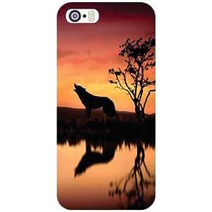 Apple iPhone 5S Back Cover - Roar Designer Cases