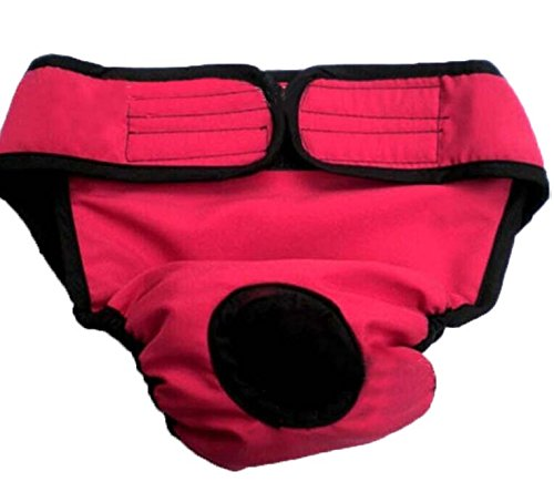 """Pawz Road Max Diaper Dog Sanitary Pantie With Valco Closure Red (For Girl Dogs) (Xl(21.7""""-27.6""""))"""