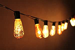 Quality String Lights : Amazon.com: 10 Ft Set of 10 Mercury Glass ST40 Edison Style Holiday UL Listed Commercial Quality ...