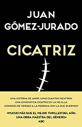 Cicatriz eBook: Juan Gómez-Jurado, B de Books: Amazon.es