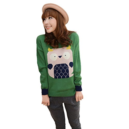Cute Owl Sweater Long Sleeve Pullover Bky5-091
